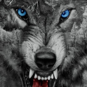 Roaring Wild Wolf Theme