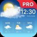 Pronóstico del tiempo Pro