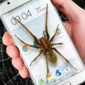 전화 재미있는 농담 거미