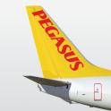 Pegasus Book Cheap Flights