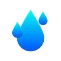 RainViewer: NOAA Weather Radar, Rain Forecast