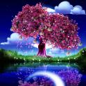 Cherry Blossom Live Wallpaper
