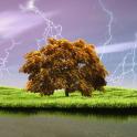 Spring Storm Live Wallpaper