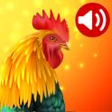 Animales: Tonos de llamada