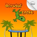 Acrobat Gecko