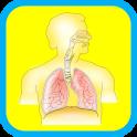 Human Body Anatomy for Kids 2
