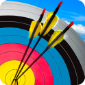 Real Archery Shooting