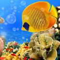 Aquarium Live Wallpaper Fish Tank Background