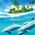 Dolphin Live Wallpaper Pictures of Dolphins