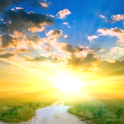 Sunrise Live Wallpaper Beautiful Pictures