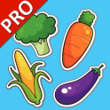 Vegetables Cards PRO (Learn English Faster)