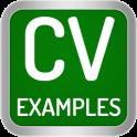 CV Examples 2020