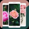 HD Pink Roses Live Wallpaper