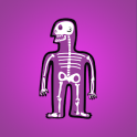 Cool Facts About Human Body