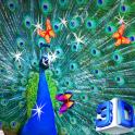 3D Peacock Wallpapers