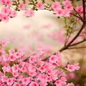 봄 꽃라이브 배경 화면