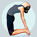 Hatha yoga for beginners-Daily home poses & videos