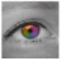 ColorSwitcher Lite
