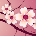 Sakura Pro Live-Hintergrund