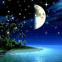 Shimmering Moonlight Live Wall
