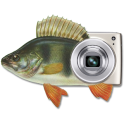 MP Fishing Photo Widget