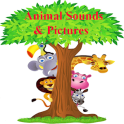 Zoo Animal Sounds And Pictures