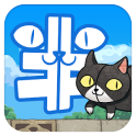 Han-Neko the mysterious cat