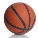 Basketball Scorebook & Charts