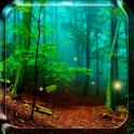 Wald Live Hintergrund