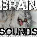 Brain Sounds Binaural Beats