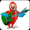 Talking & Singing Parrot