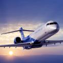 FLIGHT PILOT SIMULATOR
