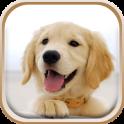 Cute Puppies Live Wallpaper