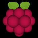 Very Raspberry