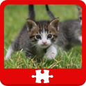 Cats and Kittens Puzzles