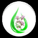 Pro Herbalist Helper