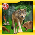 Wild Animal Hunt : Jungle