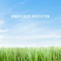 Mindfulness Meditation SE