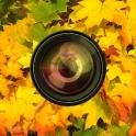 Aki Camera -Autumn & halloween