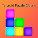 Tertroid Puzzle Classic Block