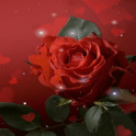 Magical Red Rose LWP