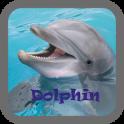ondo de pantalla de delfines