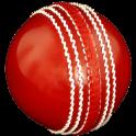 Cricket Coaching Tutorials