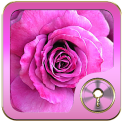 Pink Rose Go Locker theme