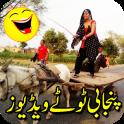 Punjabi Totay