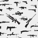 Firearms Licence Study Quiz