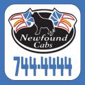 Newfound Cabs