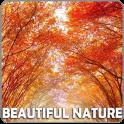 Cool Beautiful NatureWallpaper