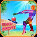 Beach Cricket 2017!