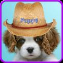 Sweet puppy live wallpaper